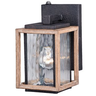 Brandie 1-Light Outdoor Wall Lantern