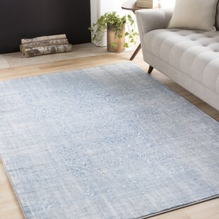 Blue Rugs | Joss & Main