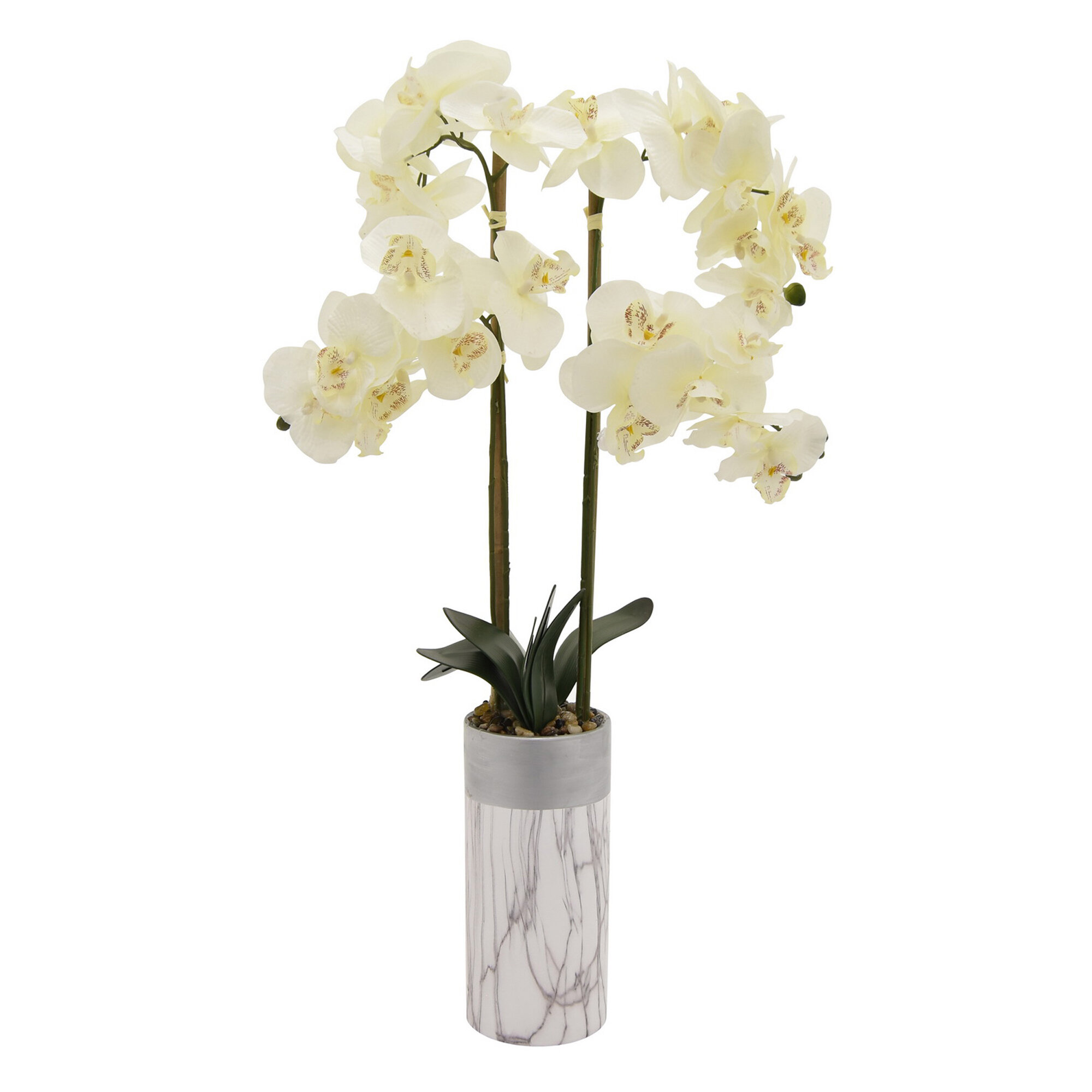Mercer41 Faux Orchid Flowering Plant in Pot | Wayfair on grape plant name, pink hydrangea plant name, christmas red plant name, heroin plant name,