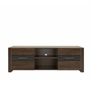 Lofton TV Stand for TVs up to 58 by Orren Ellis