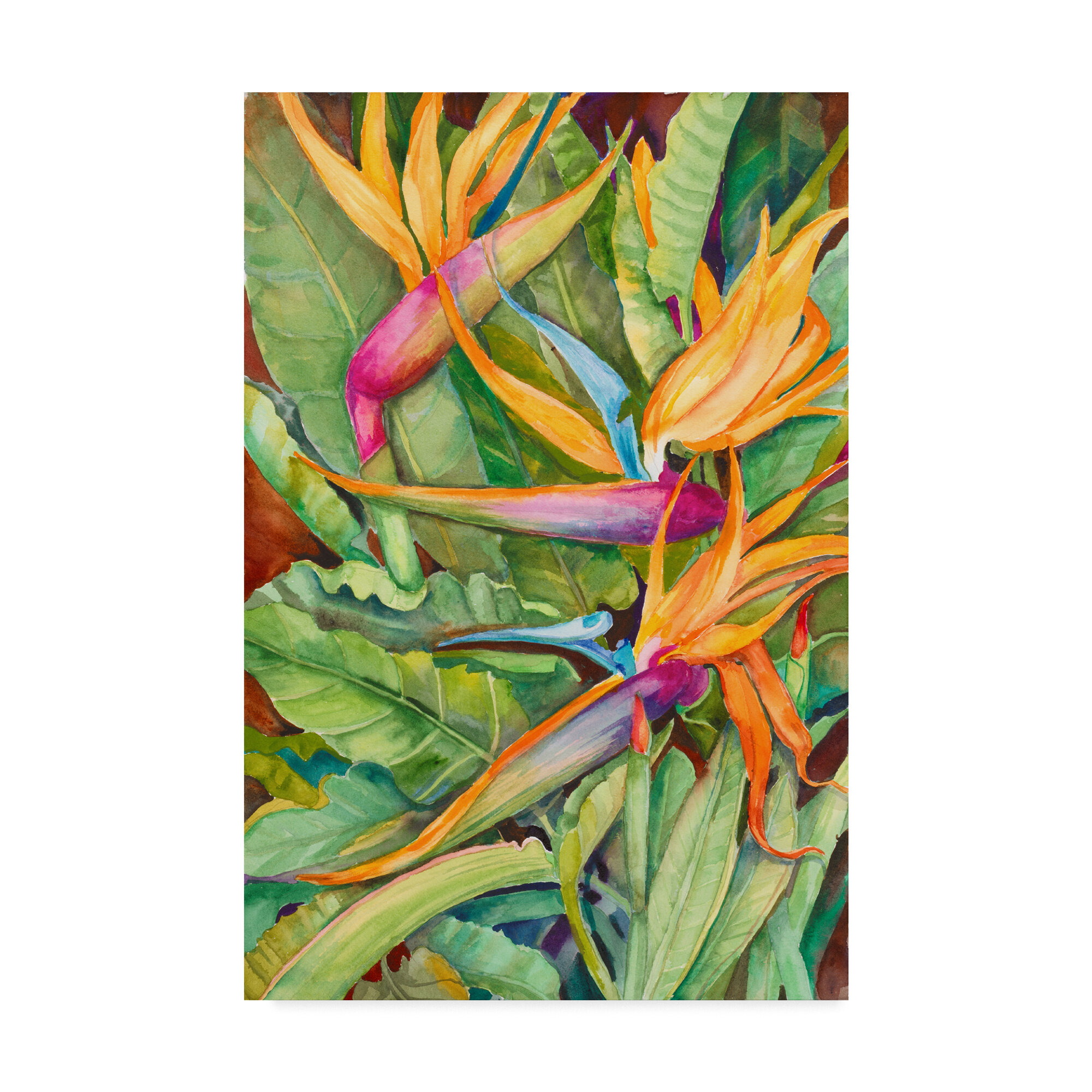 Trademark Art Birds Of Paradise Acrylic Painting Print On Wred Canvas Wayfair
