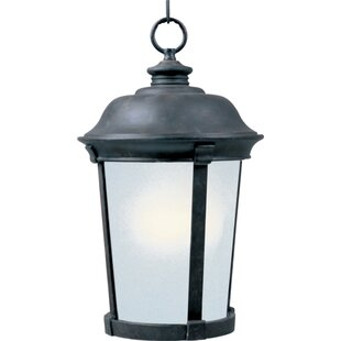 Darby Home Co Dove Springs 1-Light Outdoor Hanging Lantern
