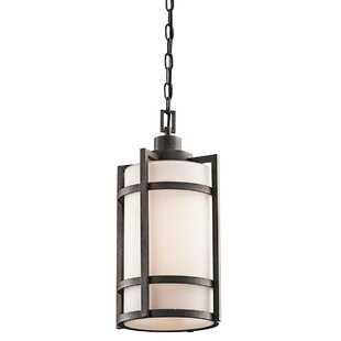 Millbourne 1-Light Outdoor Pendant