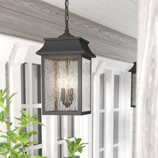 Ericsson 2 Light Outdorry Hanging Lantern by Alcott Hill