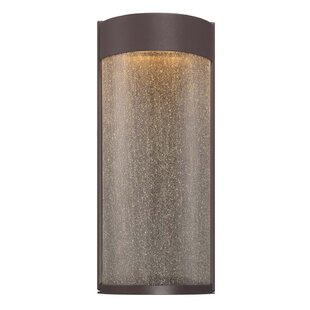 Rain 2-Light LED Outdoor Flush Mount