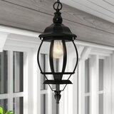 Zuckerman 1 -Bulb 17'' H Outdoor Hanging Lantern