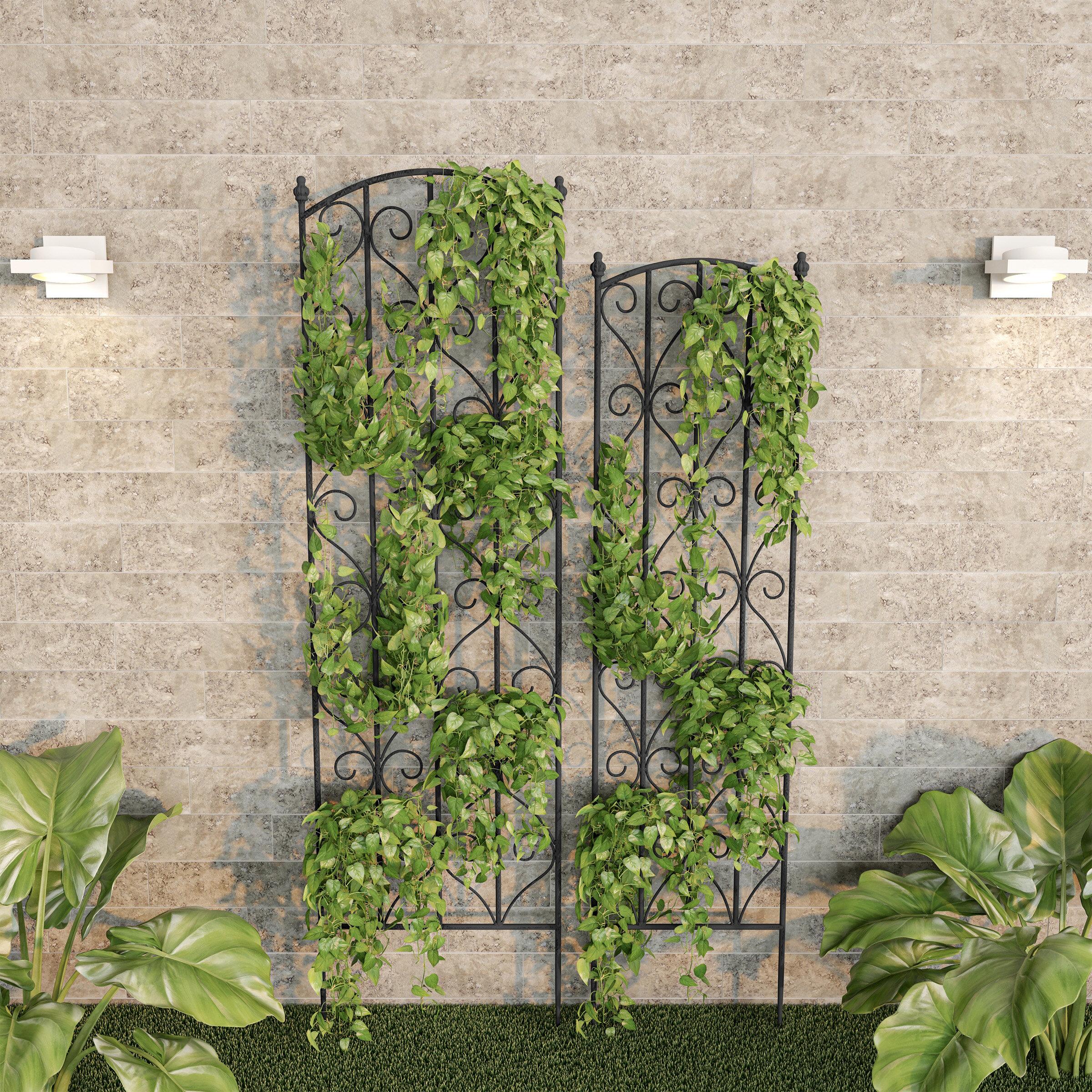 Pure Garden 2 Piece For Climbing Plants