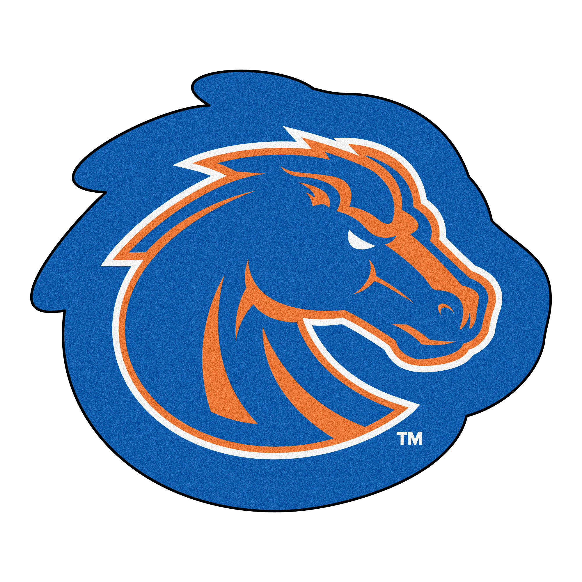 Fanmats Ncaa Boise State University Mascot 40 In X 30 In Non Slip Indoor Only Mat Wayfair