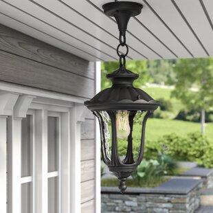 Three Posts Gurnee 1-Light Outdoor Hanging Lantern