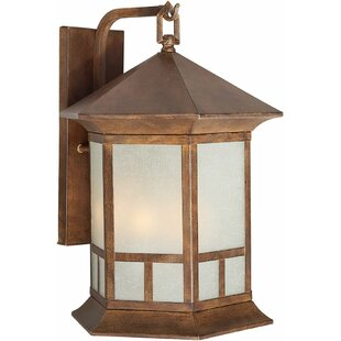 Heskett 1-Light Outdoor Wall Lantern
