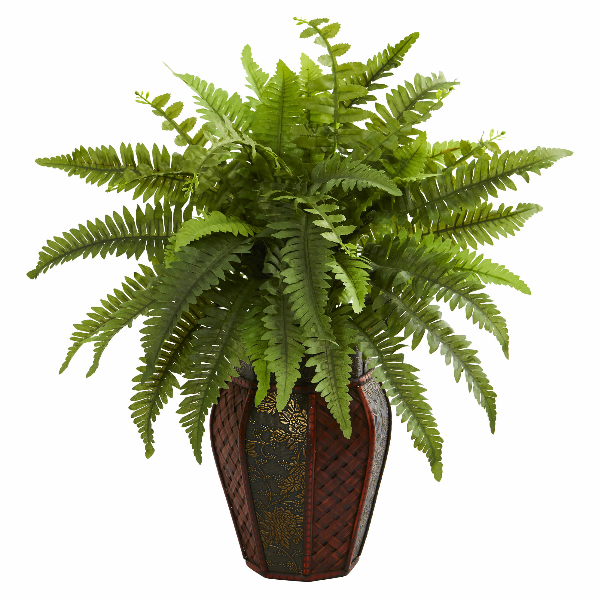 World Menagerie Boston Fern Desktop Foliage Plant In Decorative Decorative Vase Wayfair