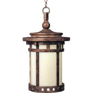 Loon Peak Hellwig 1-Light Outdoor Hanging Lantern