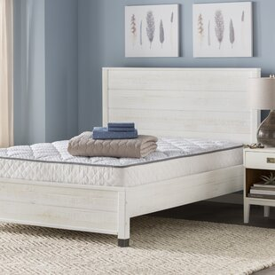 Wayfair Sleep™ Wayfair Sleep Medium Innerspring Mattress