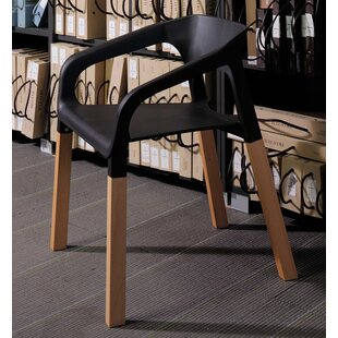 Amy Arm Chair eModern Decor
