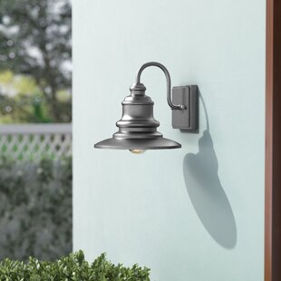 Beachcrest Home Griffin 1-Light Outdoor Metal Barn Light