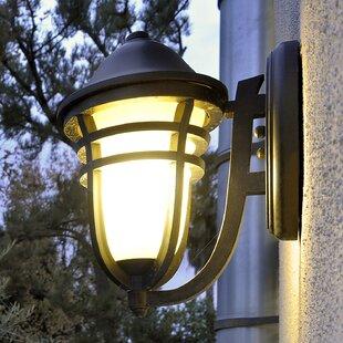 Loon Peak Portola 1-Light Outdoor Sconce