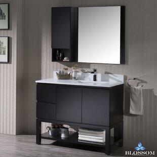 https://secure.img1-fg.wfcdn.com/im/86506761/resize-h310-w310%5Ecompr-r85/4402/44026659/maly-42-single-bathroom-vanity-set-with-mirror.jpg