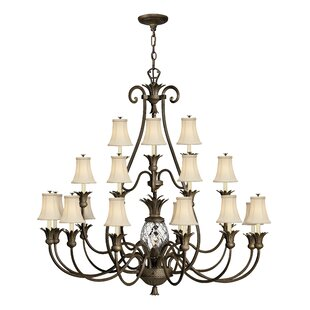 Beachcrest Home Terry 21-Light Shaded Chandelier