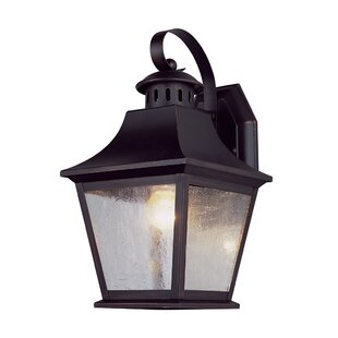 Owen 1-Light Outdoor Wall Lantern