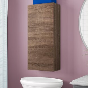 Tuvalu 35 X 78cm Wall Mounted Cabinet By Ebern Designs