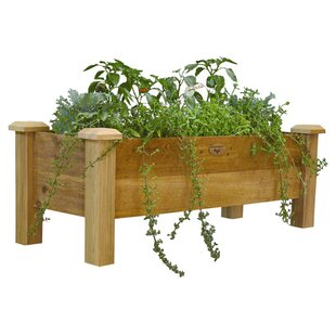 Gronomics 4 ft x 1.5 ft Wood Raised Garden