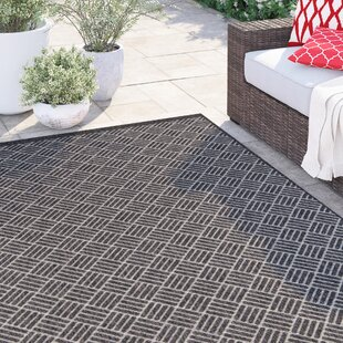 Amina Charcoal Indoor/Outdoor Area Rug
