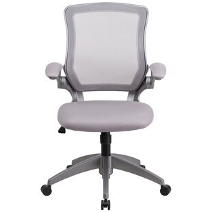 Balogh Ergonomic Mesh Office Chair by Ebern Designs