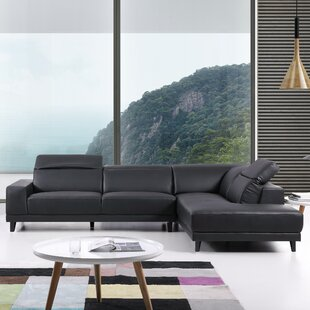 Antonelli Sectional by Orren Ellis Amazing