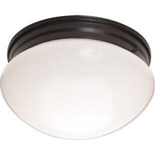 Andover Mills Slatington 2-Light Flush Mount