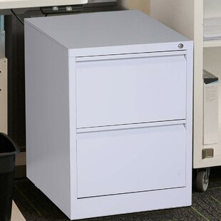 Sherryl Metal 2 Drawer Vertical Filing Cabinet by Symple Stuff