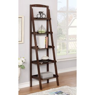 Shellie Ladder Bookcase