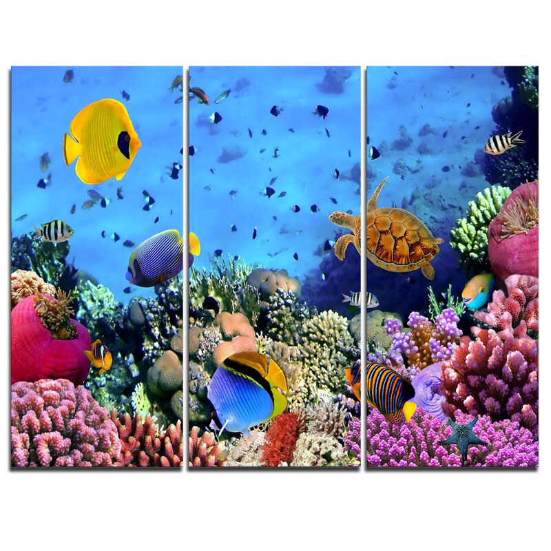 a24bb286909f Coral Colony and Coral Fishes - 3 Piece Graphic Art on Wrapped Canvas Set