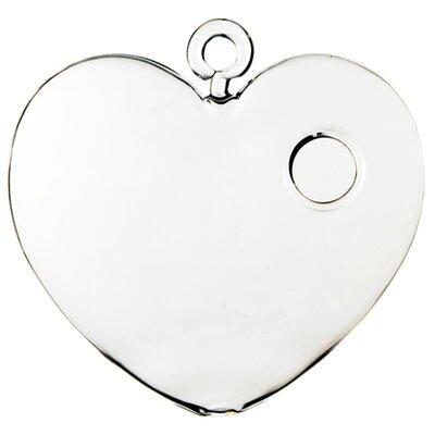Heart Hydroponic Glass Terrarium CYSExcel