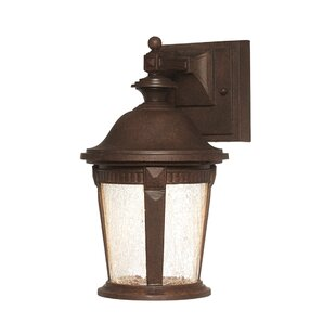 Savings Whitmore 1-Light Outdoor Wall Lantern By Designers Fountain
