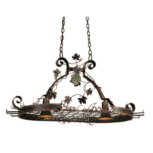 Bon Appetit 2 Light Hanging Pot Rack