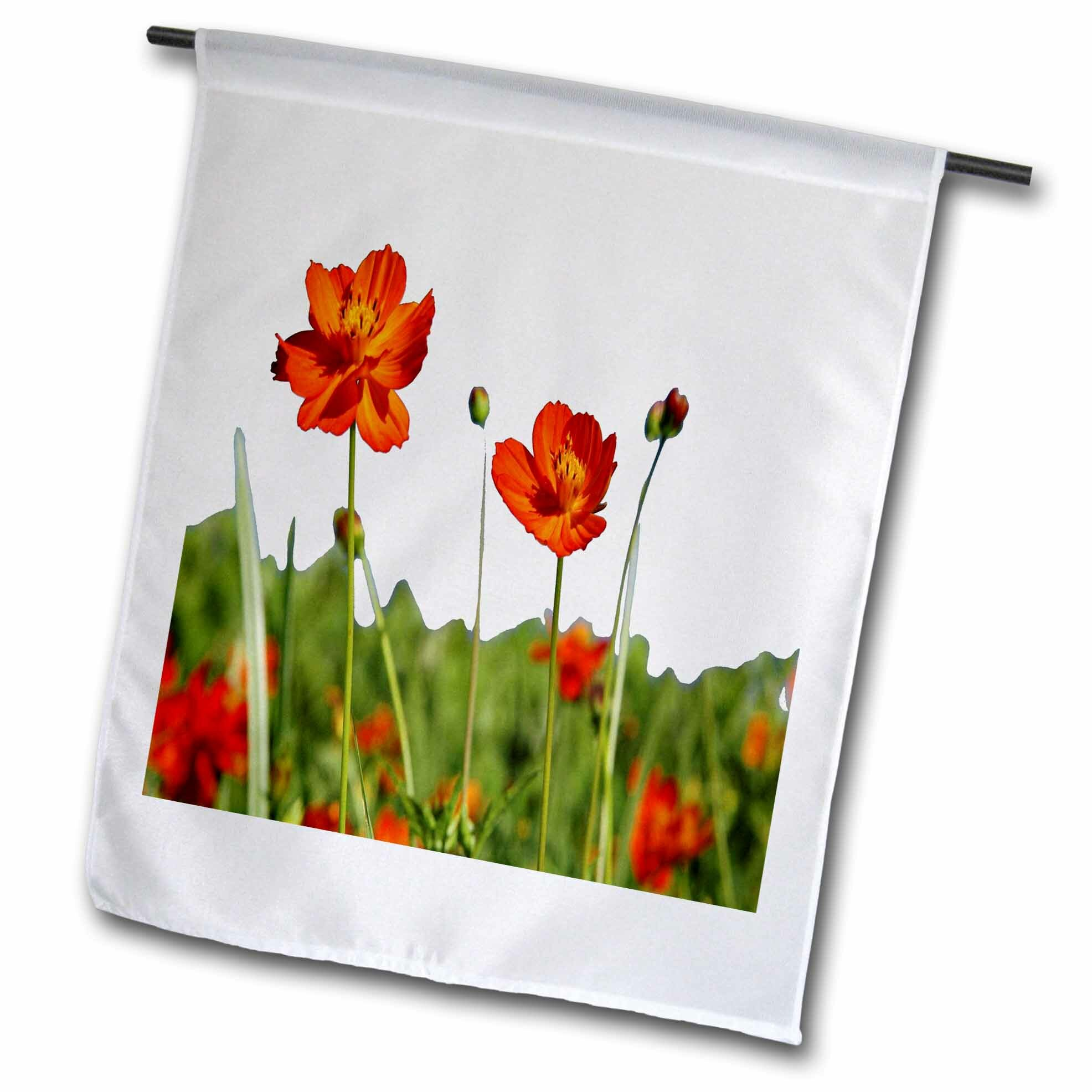 3drose Cosmos Flower In A Meadow Isolated Polyester 18 X 12 In Garden Flag Wayfair