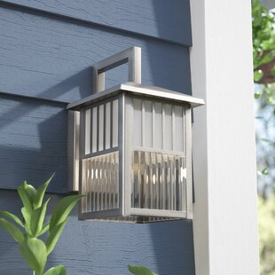 Orangeville 1-Light Outdoor Wall Lantern