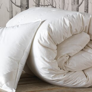 Loure Lightweight Down Alternative Comforter by Eastern Accents