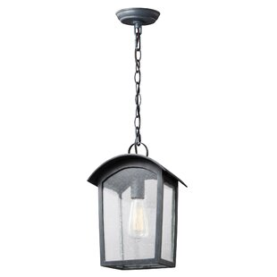 Lency 1-Light Outdoor Hanging Lantern