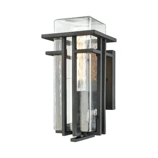 Latitude Run Steele 1-Light Outdoor Sconce