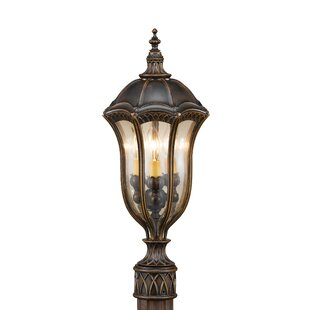 Chesterhill Outdoor 3-Light Lantern Head by Darby Home Co