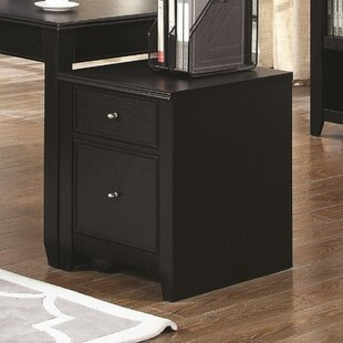 Kopp 2-Drawer Mobile Vertical Filing Cabinet