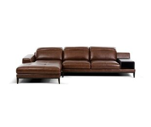 Cana Leather Sectional