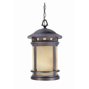 Millwood Pines Lisette 3-Light Outdoor Hanging Lantern