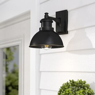 Best Reviews Elisha LED Outdoor Barn Light By Gracie Oaks