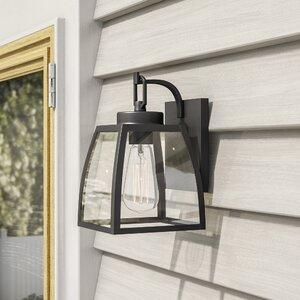 Silver Gulch 1-Light Outdoor Wall Lantern