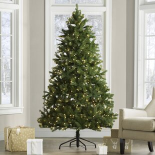 f759ef440fa6 Downswept Douglas 6.5  Green Fir Artificial Christmas Tree with 650 Clear  Lights and Stand
