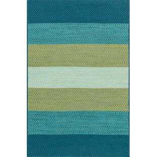 Barta Hand-Braided Blue/Green Indoor/Outdoor Area Rug