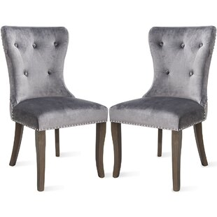 Porchella Velvet Upholstered Dining Chair in Gray Set of 2 by Red Barrel Studio