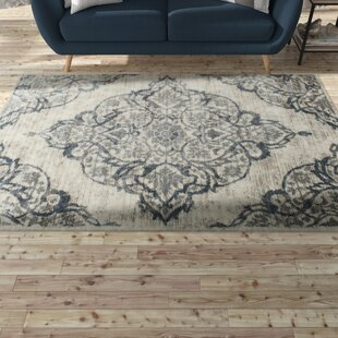 Bargain Erondelle White/Sterling Gray Area Rug By Gracie Oaks